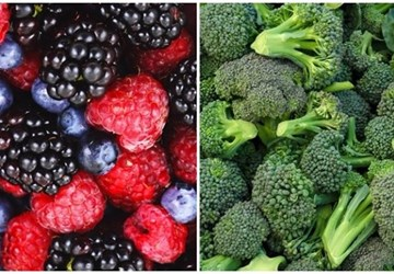 Student Blogger Dejan on Berries and Broccoli