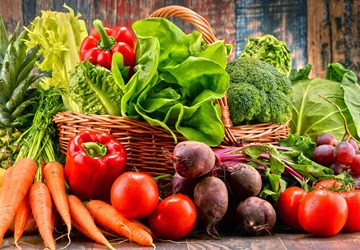 Want to Lose Weight and Stay Fit? Try a Plant Based Diet