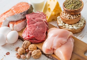 How Much Protein is Right for You?
