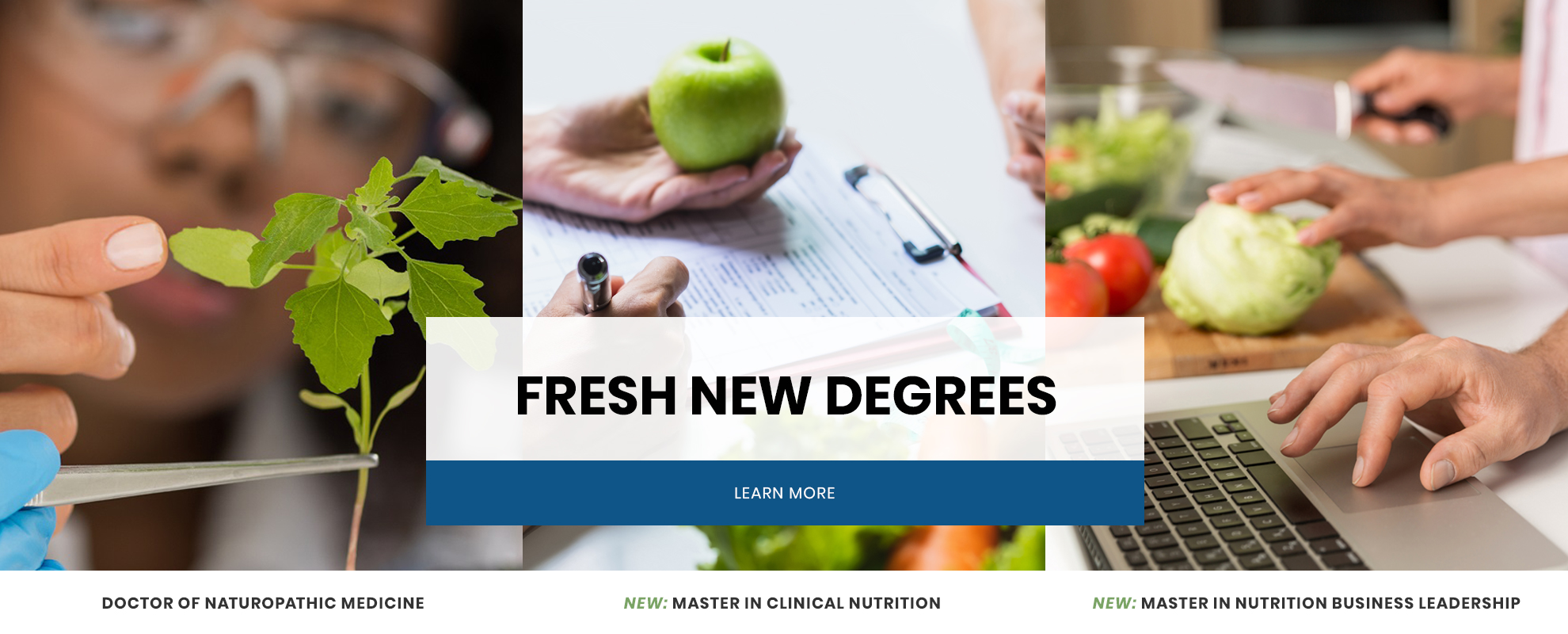SCNM has fresh new degrees. Click for details.